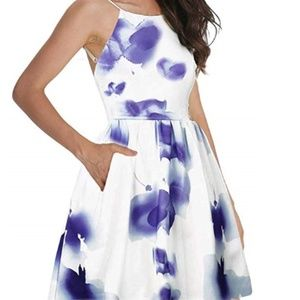 NWT Blue and White Floral Backless Dress